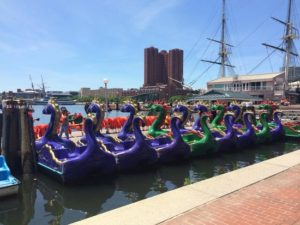 inner-harbor-Dragon-paddle-boats